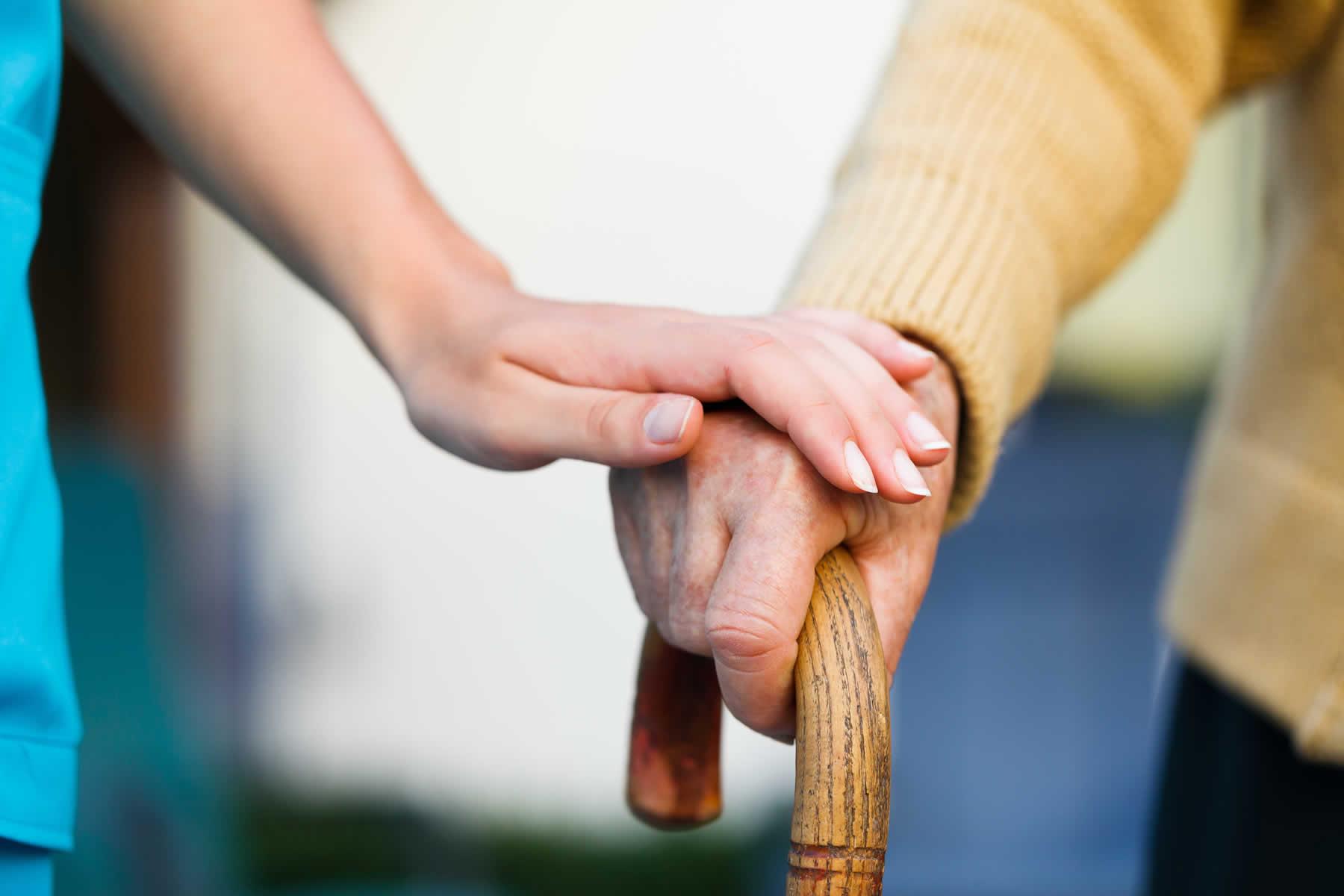 elderly companionship services new york health care